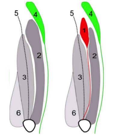 0C8BF49F-4FE3-47BC-86D1-EBFDA7ECC135